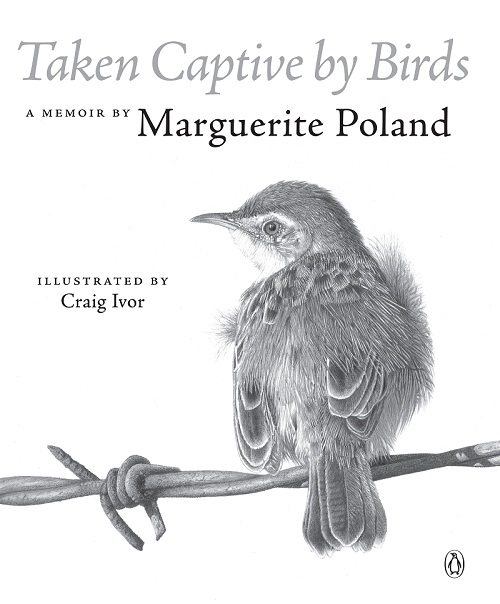 Taken Captive by Birds